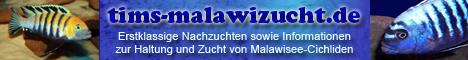 www.tims-malawizucht.de